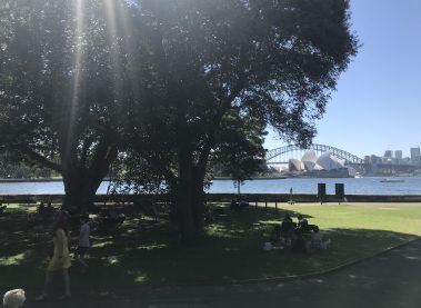 Free Tours en Sydney y sus encantadores Jardines Botánicos.