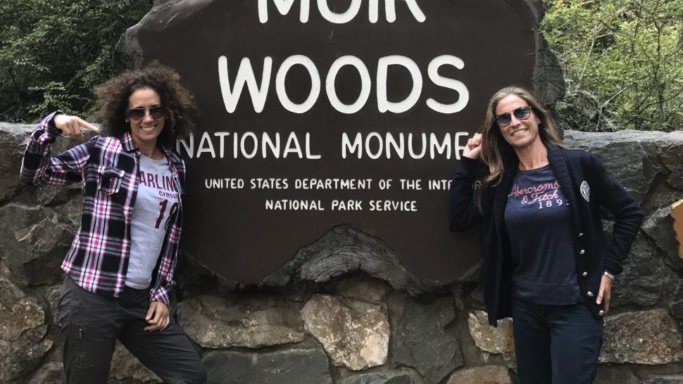 Muir Woods in San Francisco.