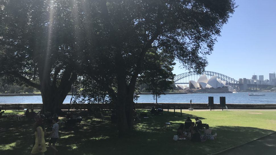 Sydney's Free Tours & its charming Botanical Gardens